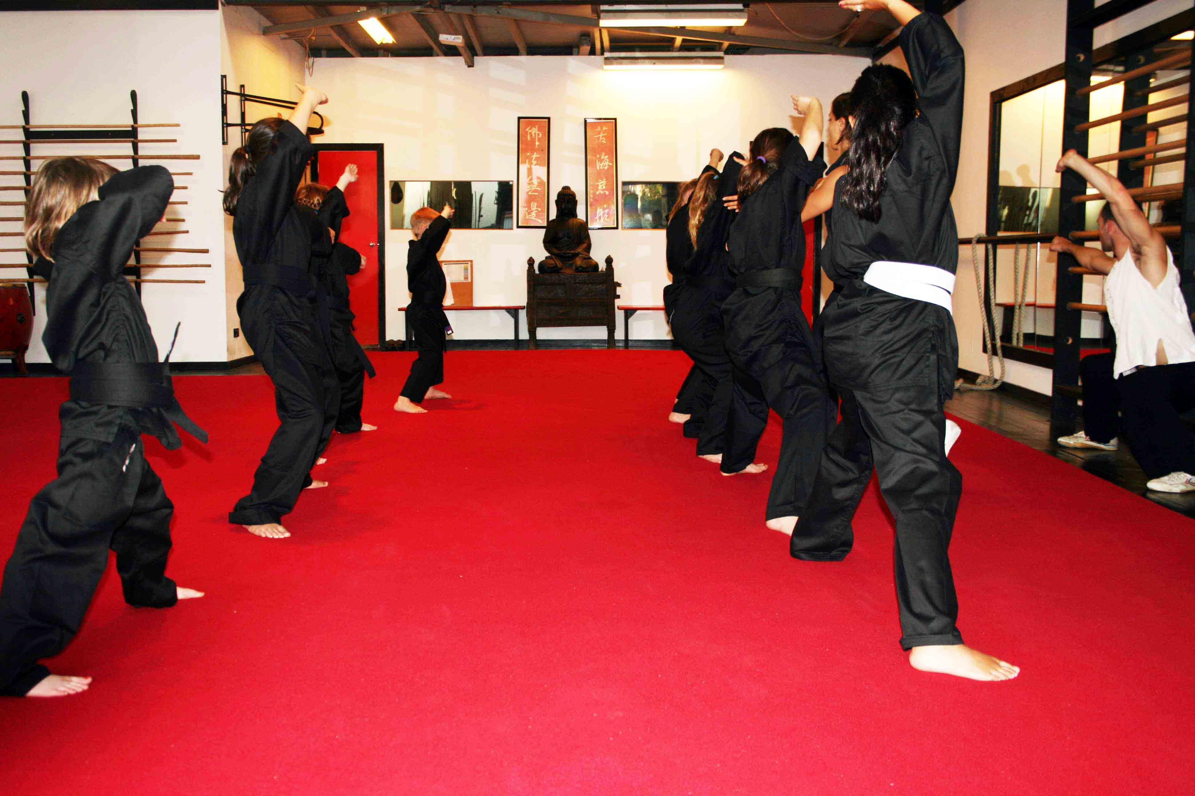 kids kung fu 2